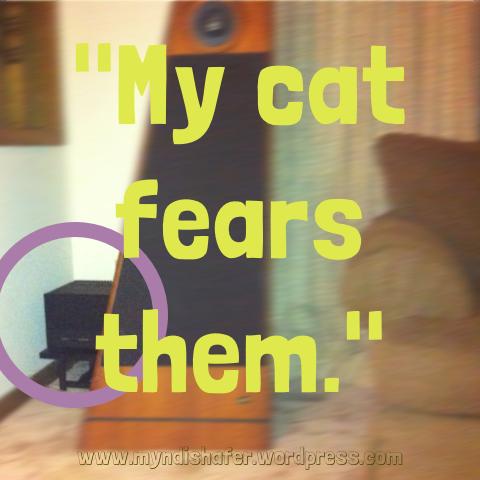 mycatfears