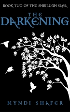 the darkening artwork amazon copy
